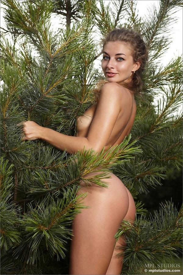 Красивая пелотка среди елок - фото #1