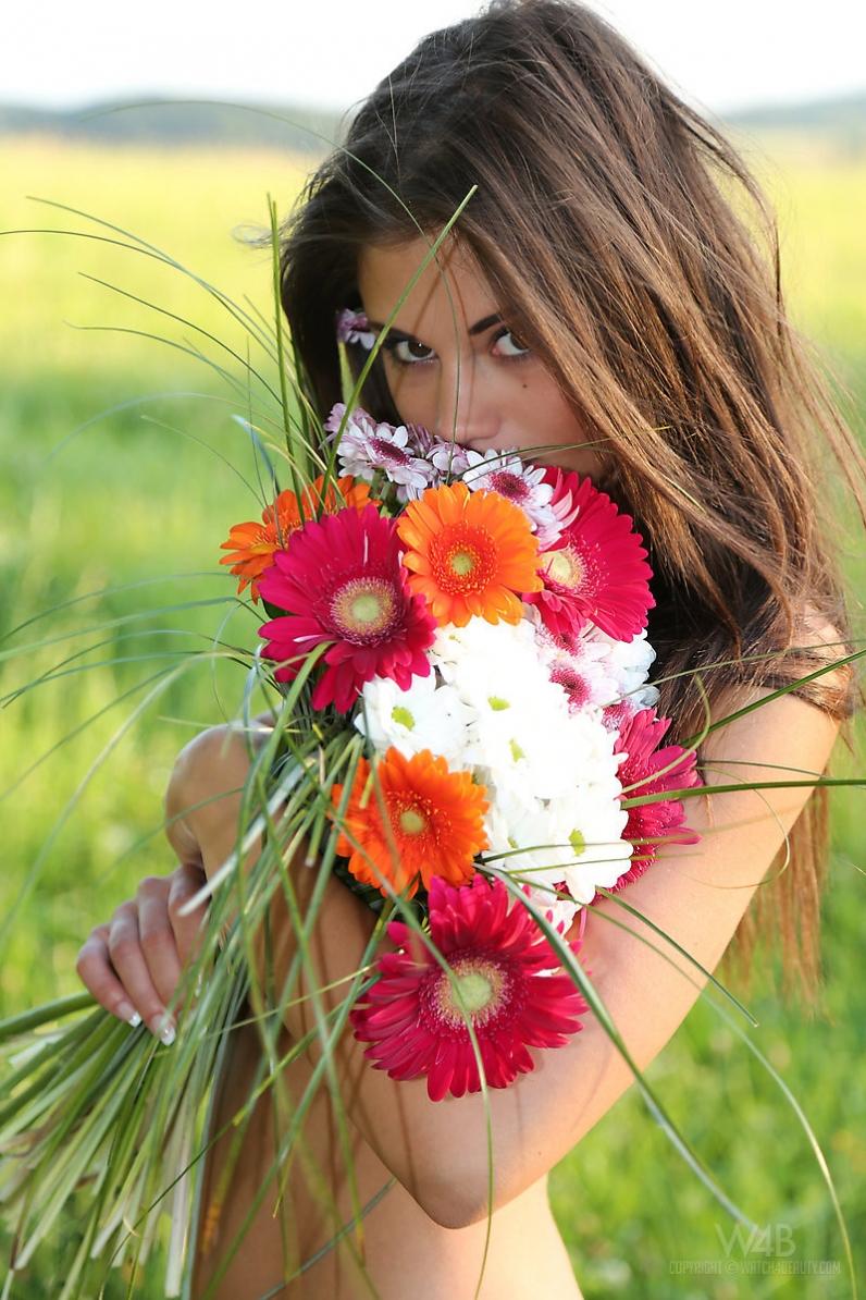 Caprice в объятиях полевых цветов