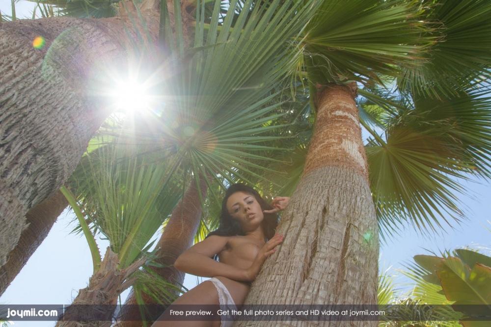 Шикарная голая жопа под пальмами