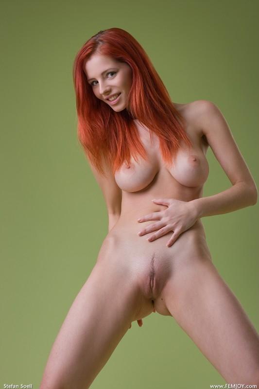 Галерея сучки